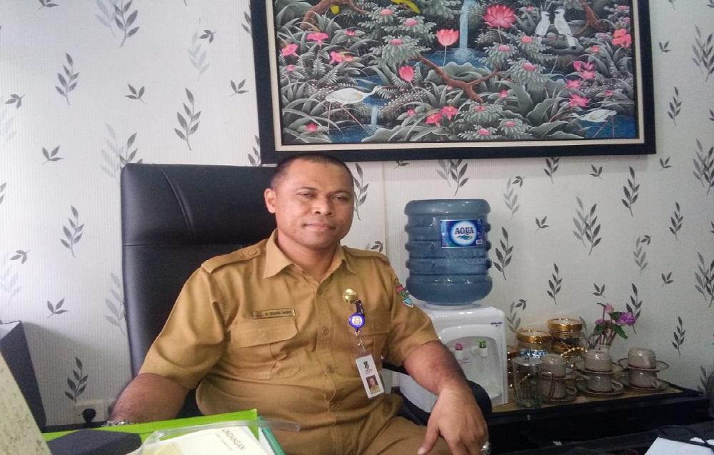 Waspada DBD, Dinkes Kabupaten Tangerang Ungkap Kasus Tertinggi di Tiga Kecamatan